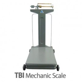 TBI Mechanic Scale